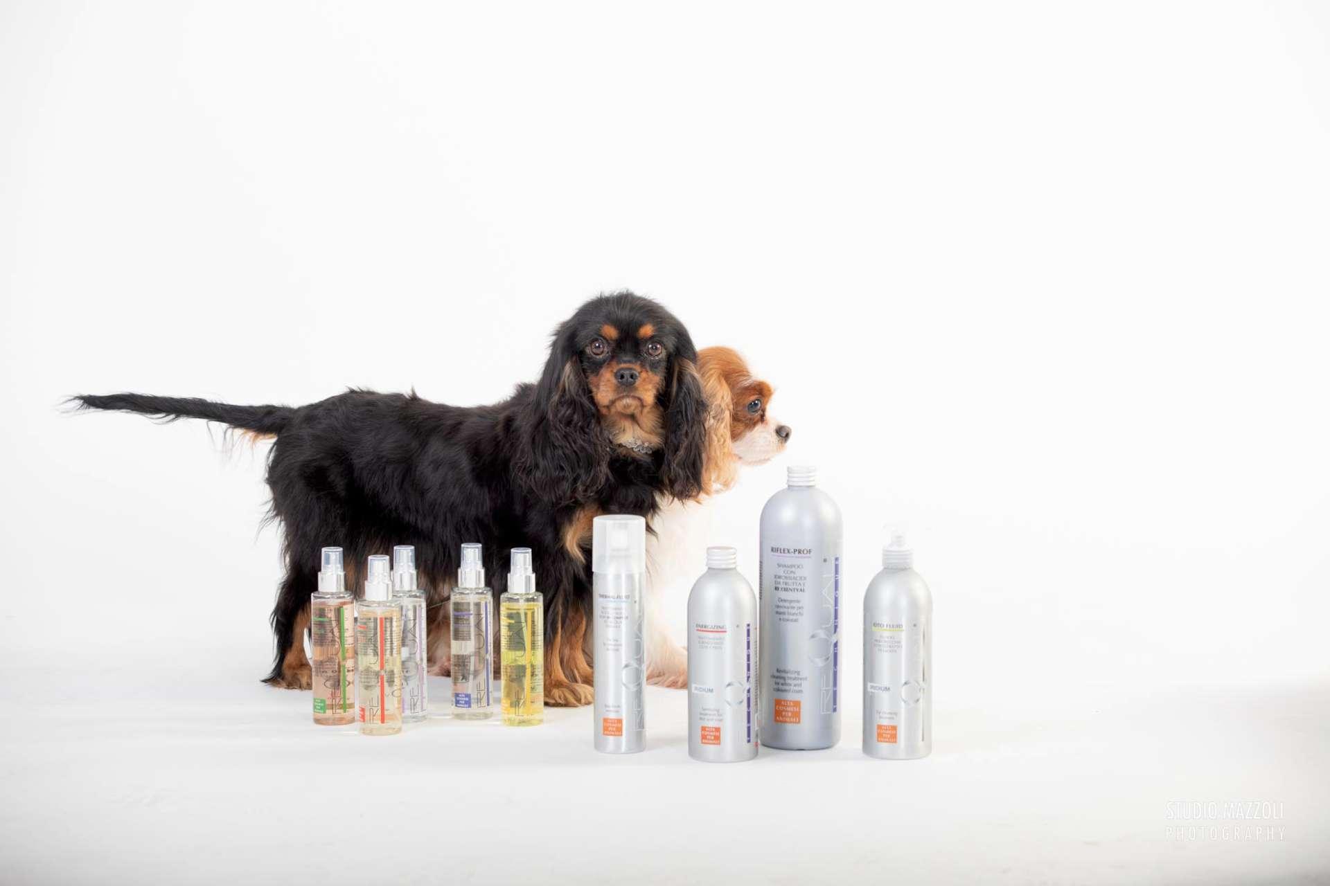 Prodotti lavaggio cani