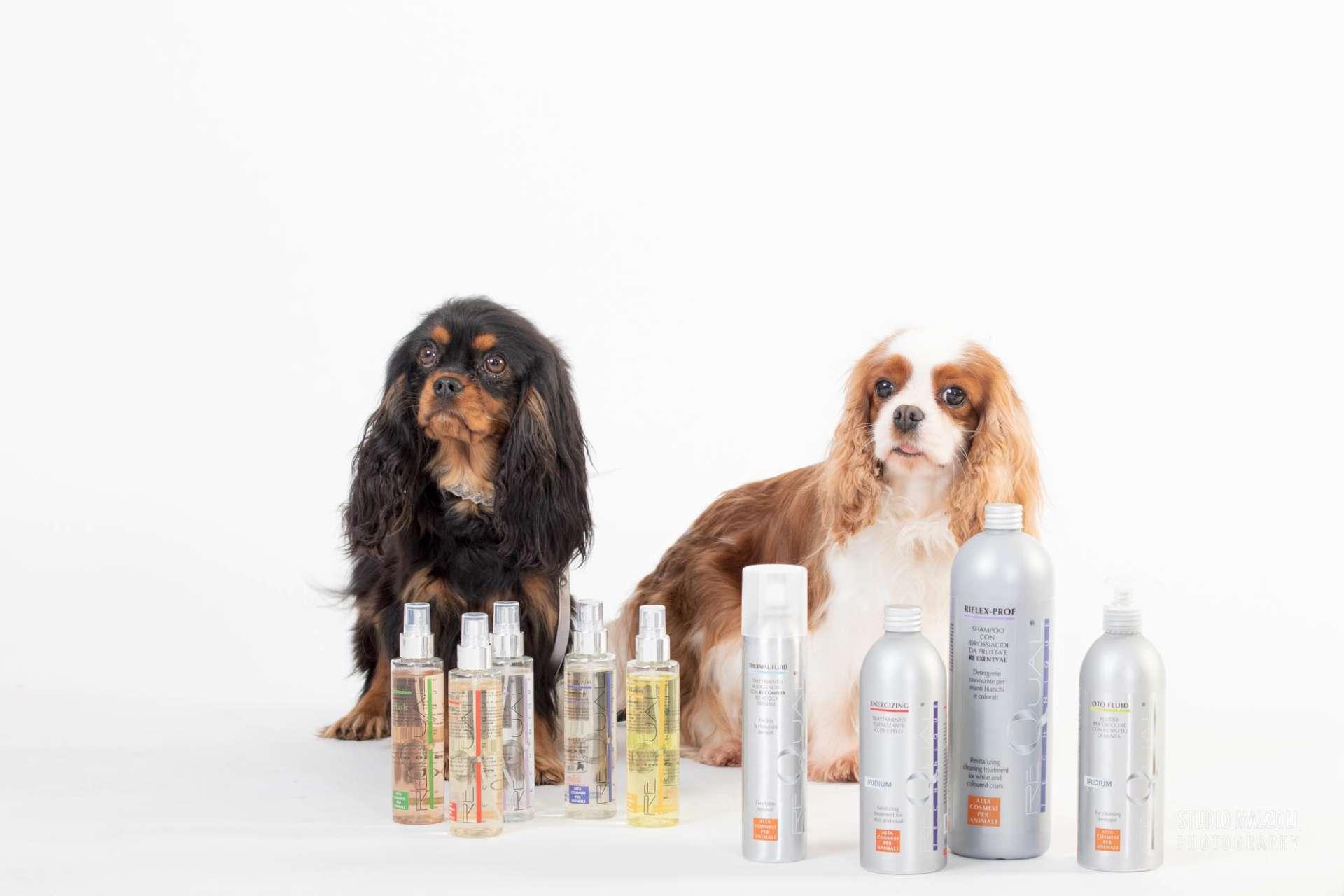 Prodotti toelettatura cani